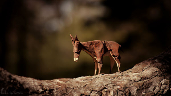 a-donkeys-journey-origami