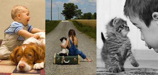 20 imagens que mostram a inocência e a beleza da amizade entre crianças e animais