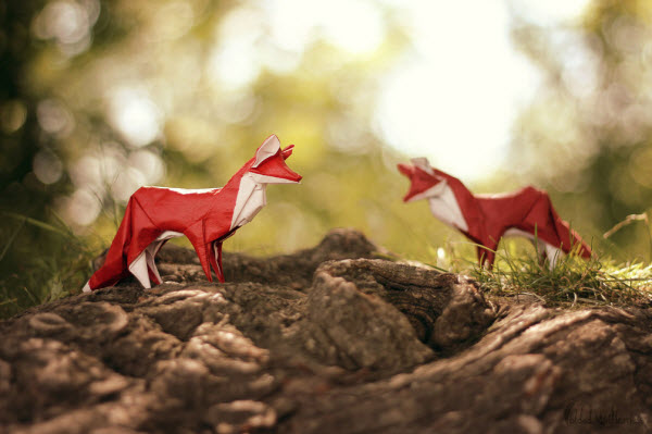 playing-the-fox-origami