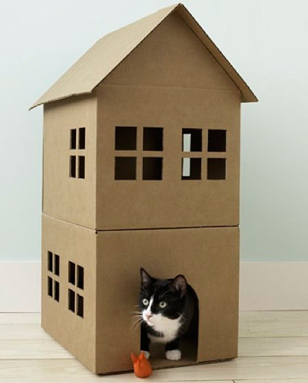 casas-caes-gatos-1