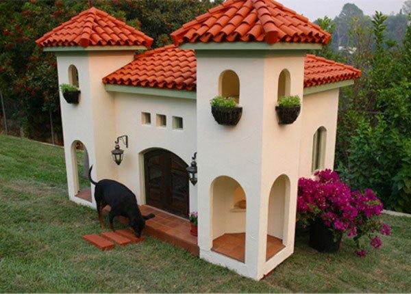 mansao-cachorro-2