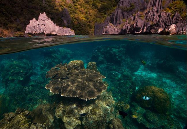 embaixo-d'água-26