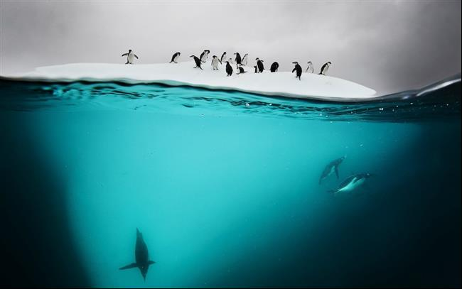 embaixo-d'água-5