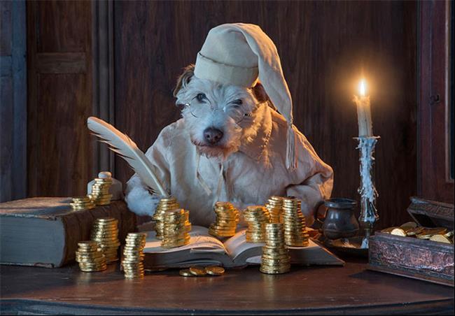 cachorro-cartão-de-natal-03