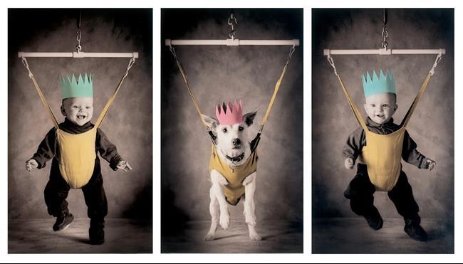 cachorro-cartão-de-natal-12