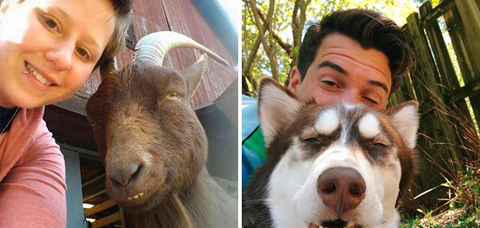 35 Fotos provando que suas selfies são inúteis sem animais