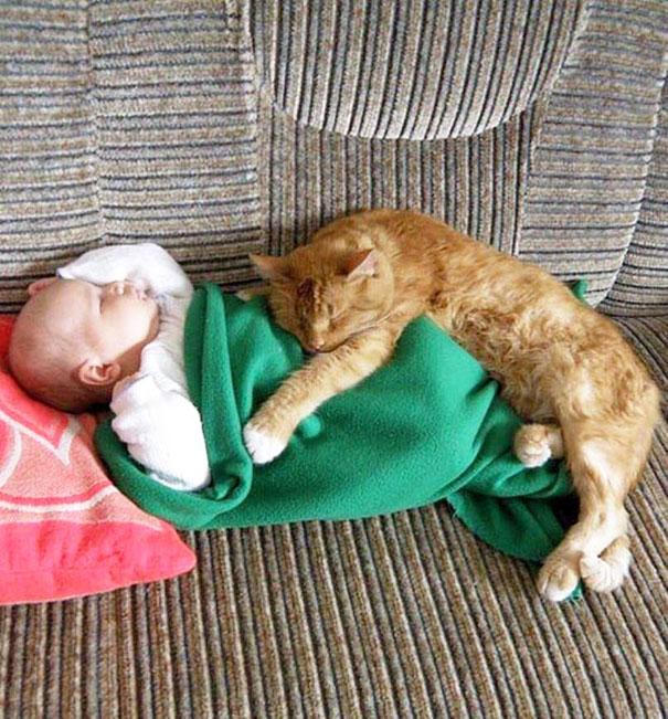 crianças-com-gatos-7