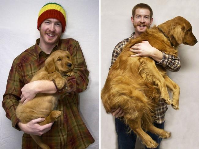 antes-e-depois-cachorros-11