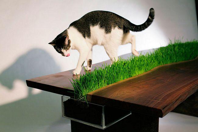 móveis-para-gatos-14