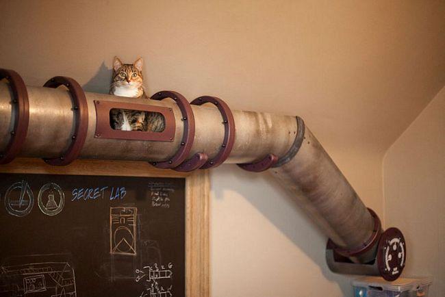 móveis-para-gatos-9