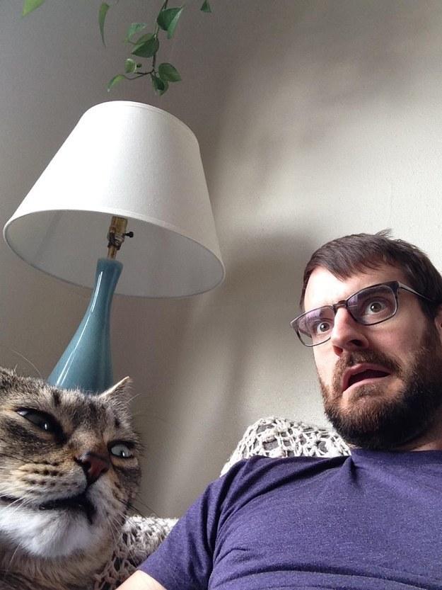 reações-de-gatos-18