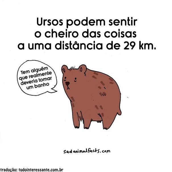 fatos-tristes-sobre-animais-8