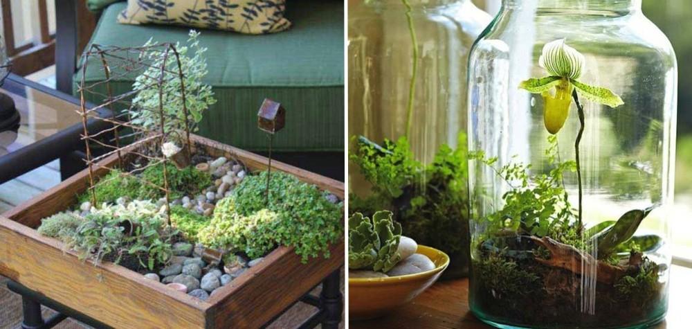 inteligentes de ter seu próprio jardim dentro de casa e sem bagunça