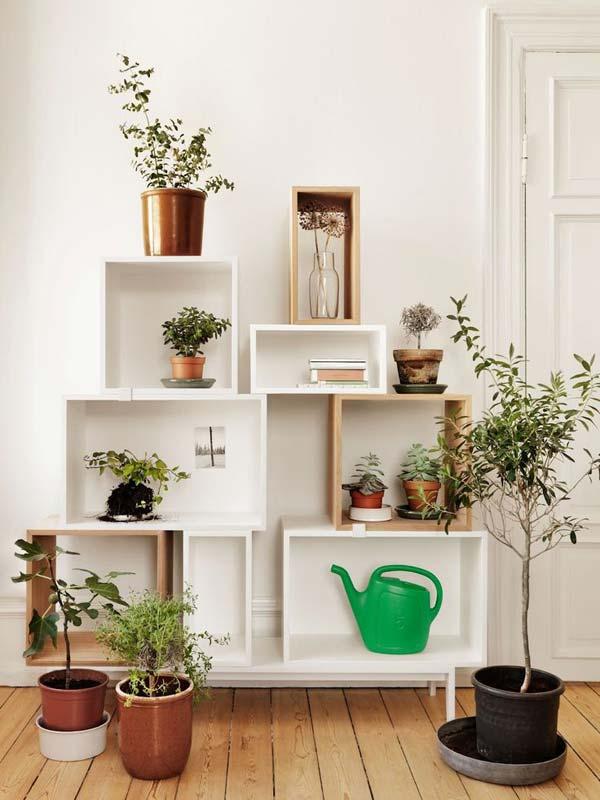 25 maneiras inteligentes de ter seu pr prio jardim dentro for Estantes para plantas exteriores
