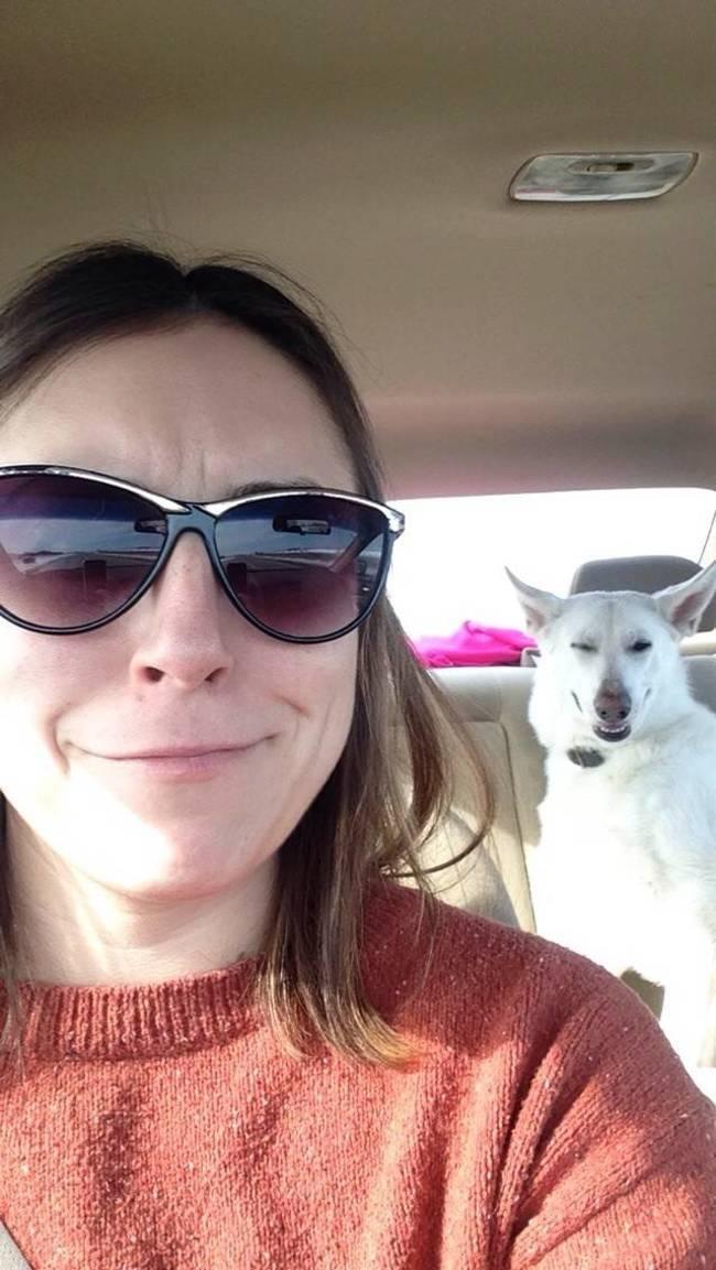 animais-que-não-querem-tirar-selfies-23