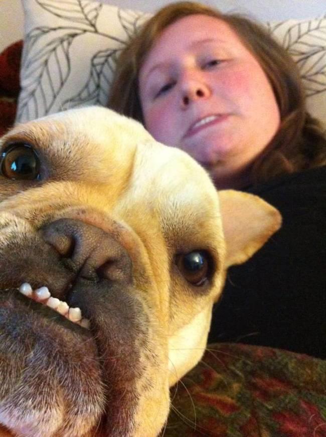 animais-que-não-querem-tirar-selfies-26