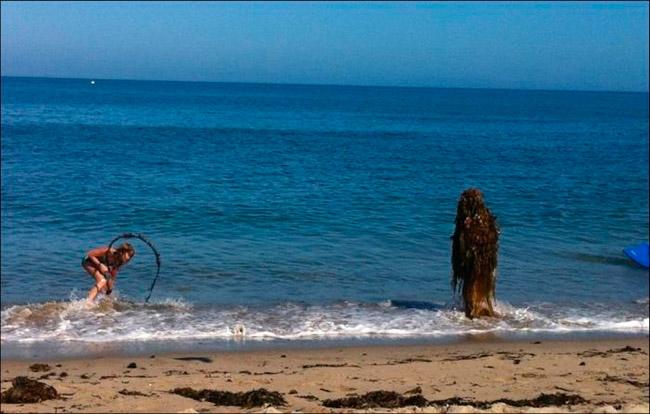 cenas-inusitadas-capturadas-na-praia-18
