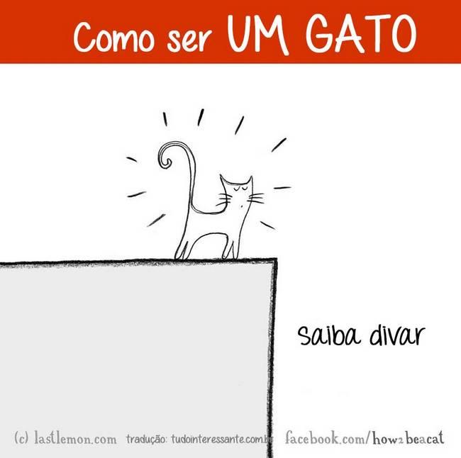 como-ser-um-gato-15