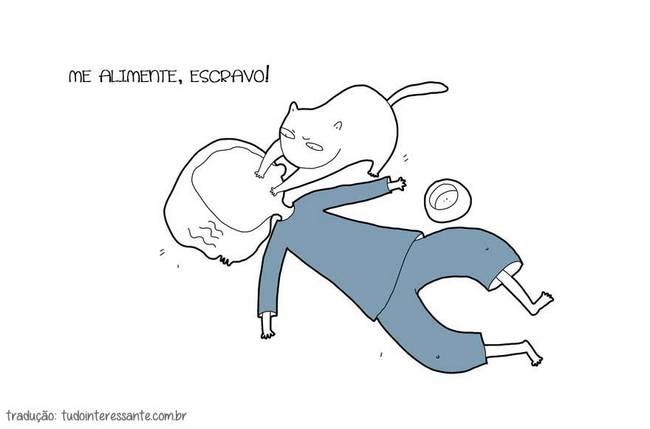 se-meu-gato-falasse-02
