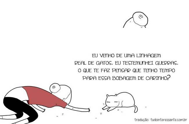 se-meu-gato-falasse-4