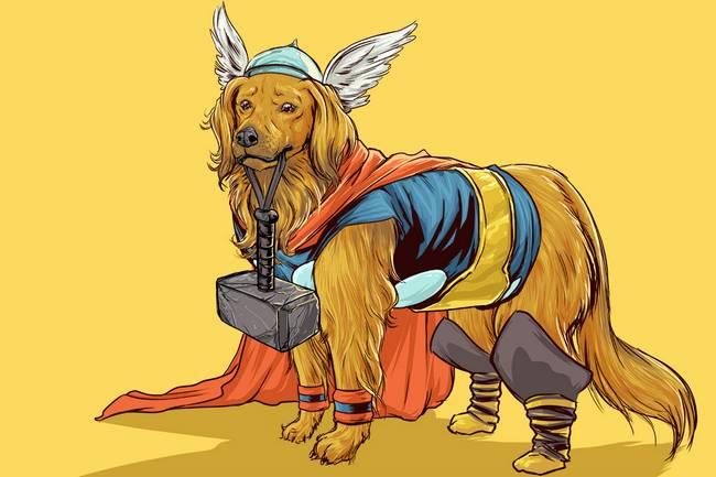 super-herois-caes-10