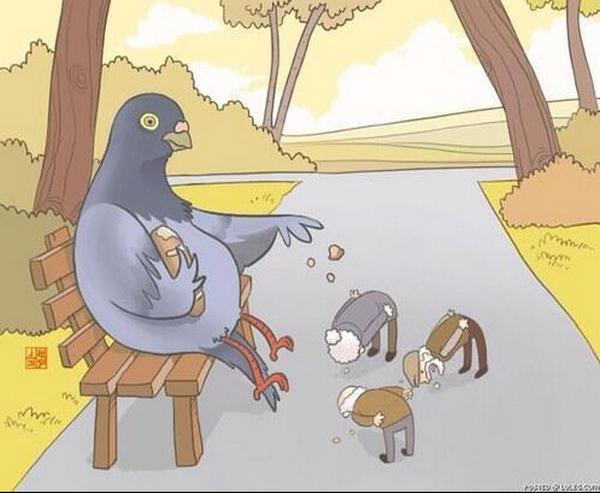 animais-como-humanos-7