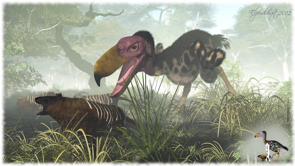 animais_gigantes11