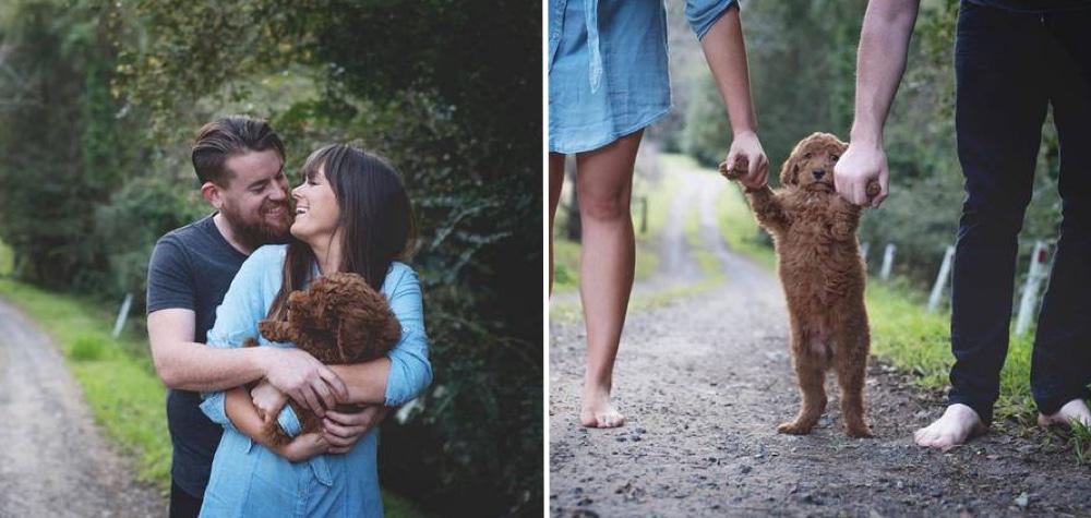 Cansado de ser pressionado para ter filhos, casal realiza ensaio fotográfico com cachorro