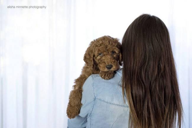 casal-faz-ensaio-fotográfico-com-cachorro-8