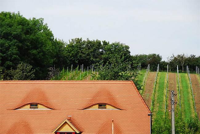 casas-que-se-parecem-com-rostos-humanos-27