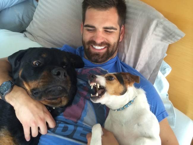 cachorros-em-posições-engraçadas-7