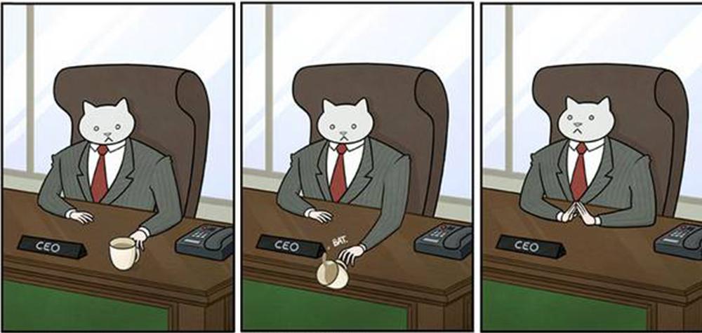 16 Situações mostrando como seria se seu chefe fosse um gato – literalmente!
