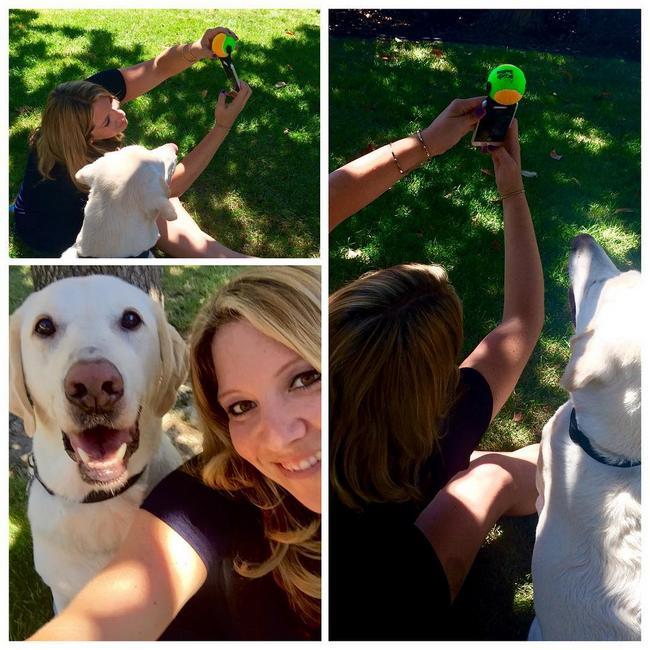 selfie-cachorros-5