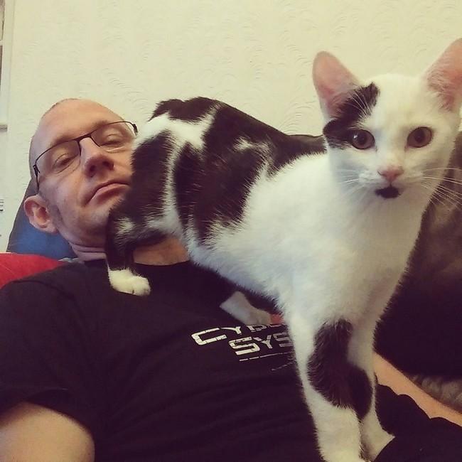 coisas-donos-gatos-entendem-3