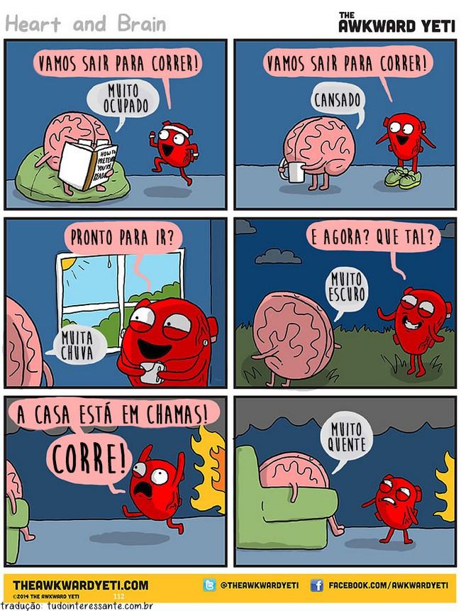 coracao-e-cerebro-20