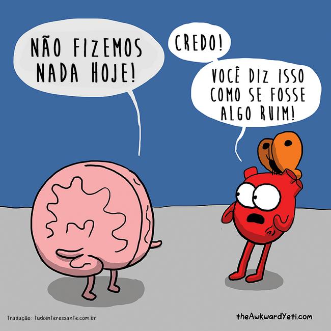 coracao-e-cerebro-40
