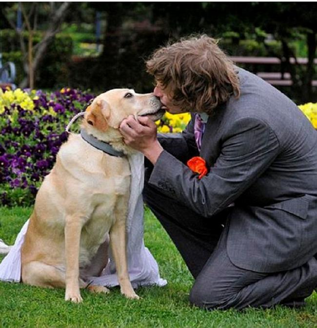 Pessoas-Casando-Animais-2