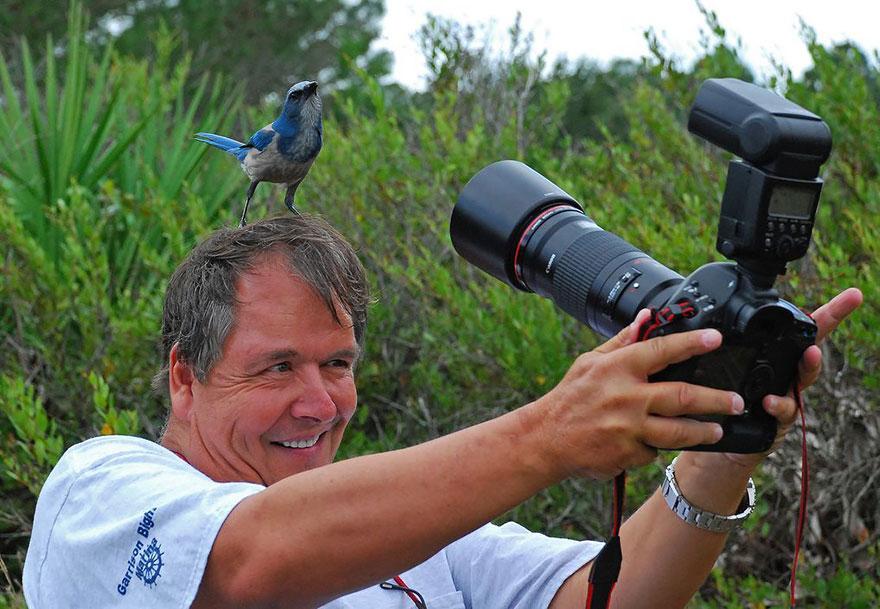 """fotografo natureza17 - Fotógrafos da natureza, os profissionais que capturam o extraordinário e """"fofurices"""""""