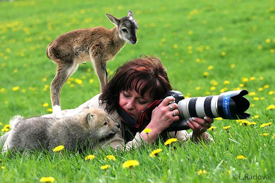 """fotografo natureza7 - Fotógrafos da natureza, os profissionais que capturam o extraordinário e """"fofurices"""""""