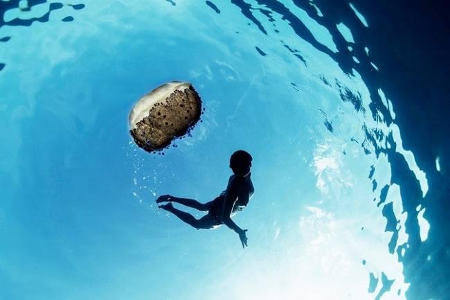 fotos-do-fundo-do-mar-1