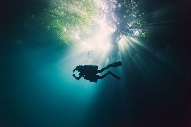 fotos-do-fundo-do-mar-12