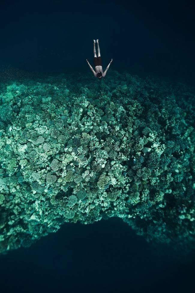 fotos-do-fundo-do-mar-7