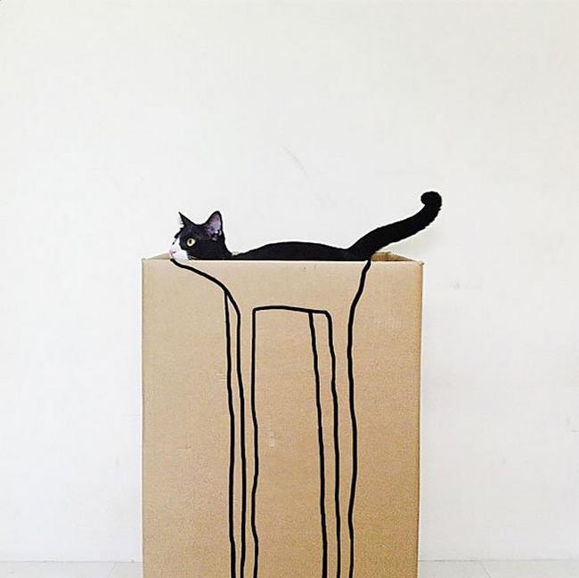 gatos-camuflados-11