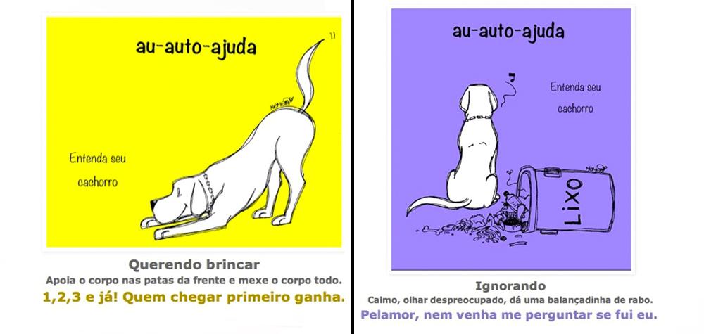cachorros-comportamento