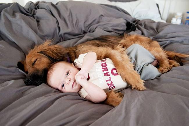 crianças-precisam-de-animais-de-estimação-11