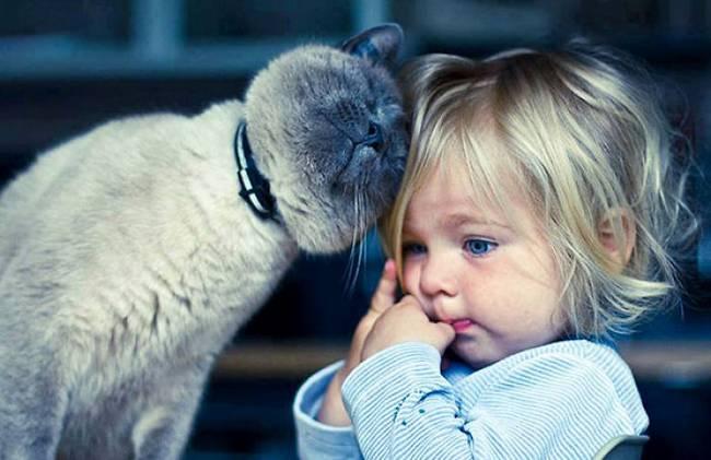 crianças-precisam-de-animais-de-estimação-18