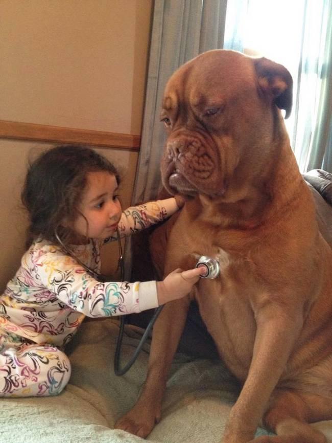 crianças-precisam-de-animais-de-estimação-2