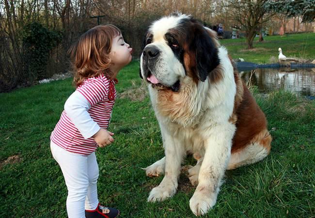 crianças-precisam-de-animais-de-estimação-30