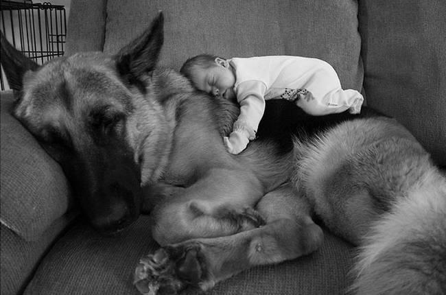 crianças-precisam-de-animais-de-estimação-7