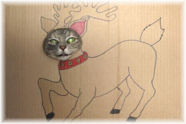 gatos-sem-espirito-natalino-9